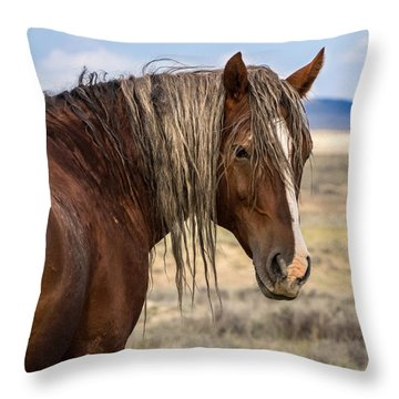 Cimarron - Wild Mustang Stallion Throw Pillow