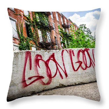 Cincinnati Glencoe Hole Graffiti Picture Throw Pillow by Paul Velgos