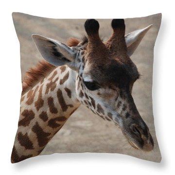 Cincinnati Sue Throw Pillow