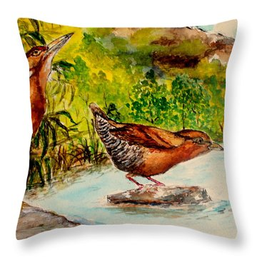 Cinnamon Bittern Throw Pillow