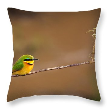 Cinnamon-chested Bee-eater Throw Pillow