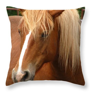 Cinnamon Girl Throw Pillow by Greg Patzer