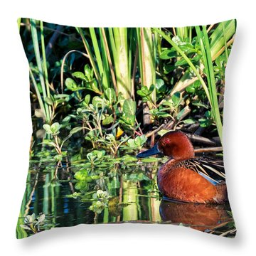Cinnamon Teal And Dragonfly Throw Pillow