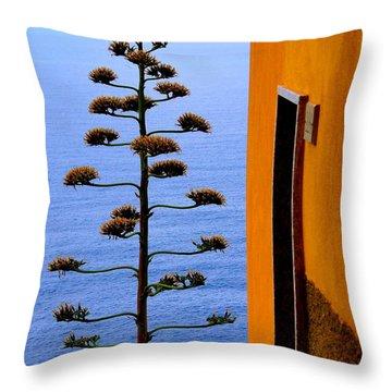 Cinque Terre View Throw Pillow by Debi Demetrion