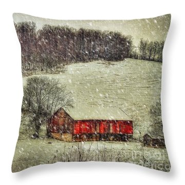 Circa 1855 Throw Pillow