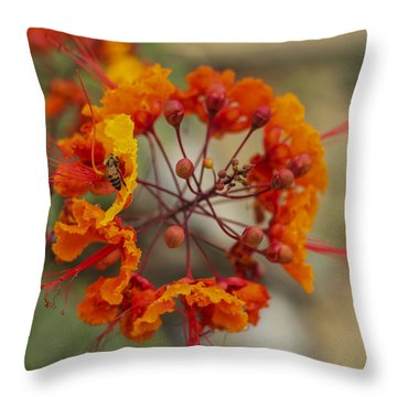 Throw Pillow featuring the photograph Circle Of Flowers by Amber Kresge
