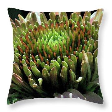 Throw Pillow featuring the photograph Circle Of Friends by Jean OKeeffe Macro Abundance Art