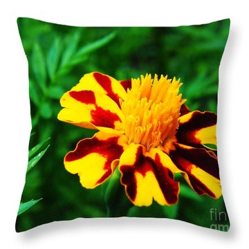 Circus Circus Marigold Throw Pillow by Lizi Beard-Ward