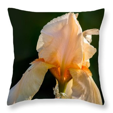 Cirrus Beauty 2 Throw Pillow