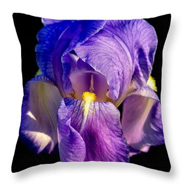 Cirrus Beauty 3 Throw Pillow