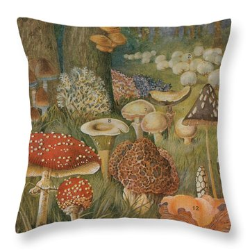Citizens Of The Land Of Mushrooms Throw Pillow by Science Source