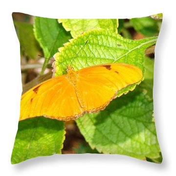 Citrus Butterfly Throw Pillow