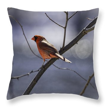City Lights Throw Pillow by Thomas Young