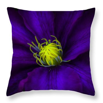 Clamatis Throw Pillow