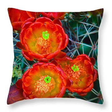 Claret Cup Throw Pillow by Inge Johnsson