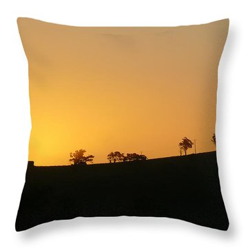 Clarkes Road Throw Pillow