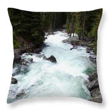 Clark's Fork River Throw Pillow