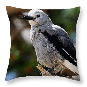 Clark's Nutcracker Throw Pillow