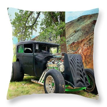 Classic Rod Throw Pillow by Liane Wright