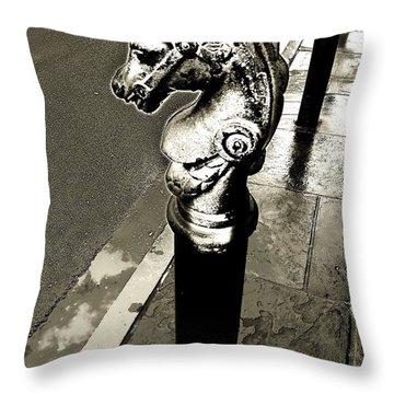 Classic Royal Throw Pillow