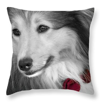 Classy Red Throw Pillow by Loriental Photography