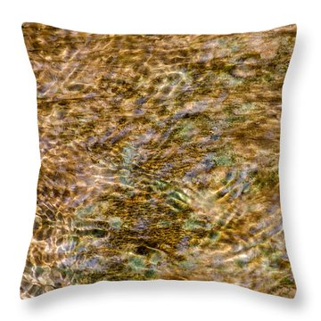 Clean Stream 2 - Featured 3 Throw Pillow by Alexander Senin