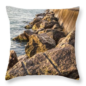 Clear Journey Throw Pillow by James  Meyer
