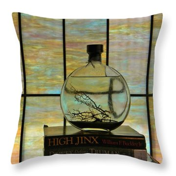 Clear On Color Throw Pillow by Jean Goodwin Brooks