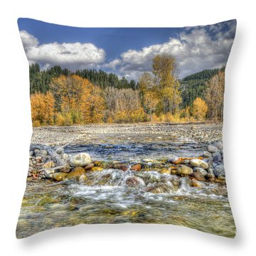 Clear Stream Throw Pillow