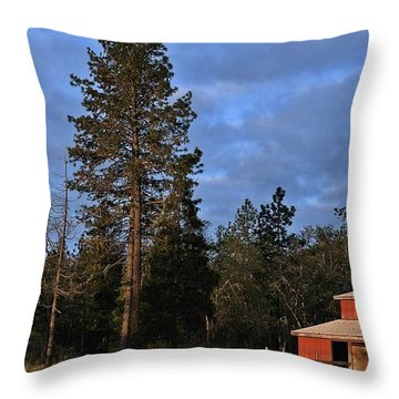 Throw Pillow featuring the photograph Clearing Clouds by Julia Hassett
