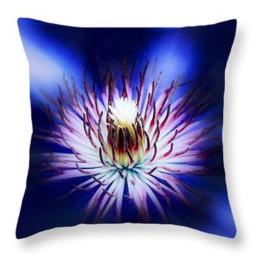 Clemantis Center Throw Pillow by Nick Kloepping