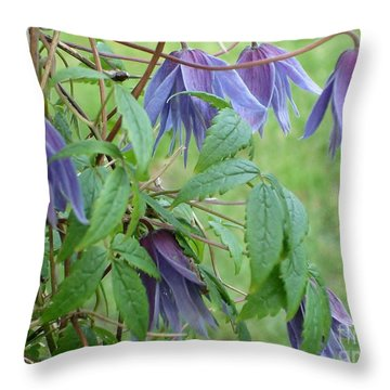 Throw Pillow featuring the photograph Clematis  by Katy Mei