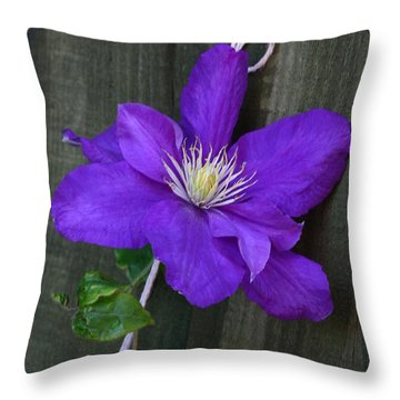 Clematis On A String Throw Pillow