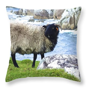 Clew Bay Sheep Throw Pillow
