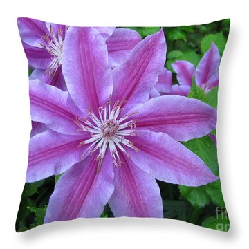 Climbing Grace Throw Pillow