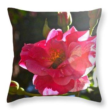Climbing Rose And Bumble Bee Throw Pillow