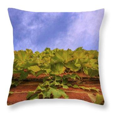 Climbing The Walls - Ivy - Vines - Brick Wall Throw Pillow by Jason Politte