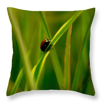 Climbing Up The Long Green Road Throw Pillow by Jeff Swan