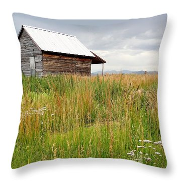Cline Ranch Outbuilding II Throw Pillow