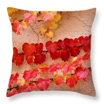 Clinging Throw Pillow