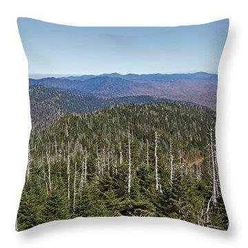Clingmans Dome Autumn Throw Pillow