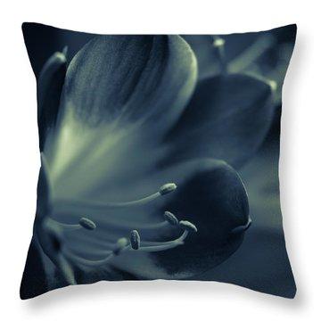 Clivia Miniata II Throw Pillow by Andreas Levi