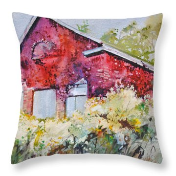 Cloak Of Colors Throw Pillow