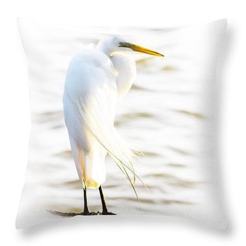 Throw Pillow featuring the photograph Cloaked And Wrapped by Ola Allen