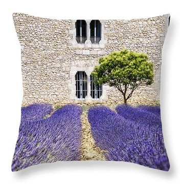 Cloister-lavender Throw Pillow