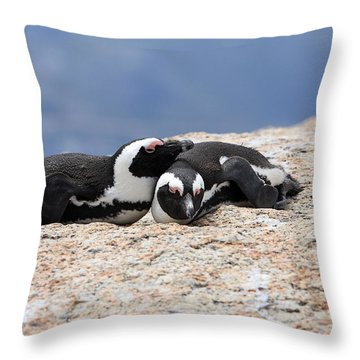 Close Bonds, African Penguin Throw Pillow