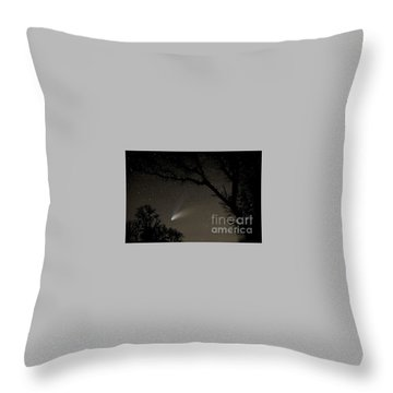 Throw Pillow featuring the photograph Close Encounter by Nick  Boren