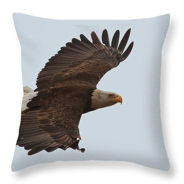 Close Encounter Of The Best Kind Throw Pillow