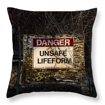 Close Enough For Me Throw Pillow by Bob Orsillo