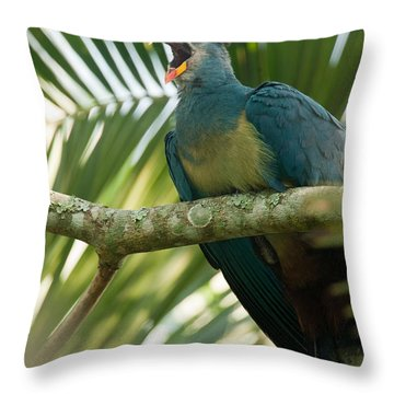 Close-up Of A Great Blue Turaco Throw Pillow